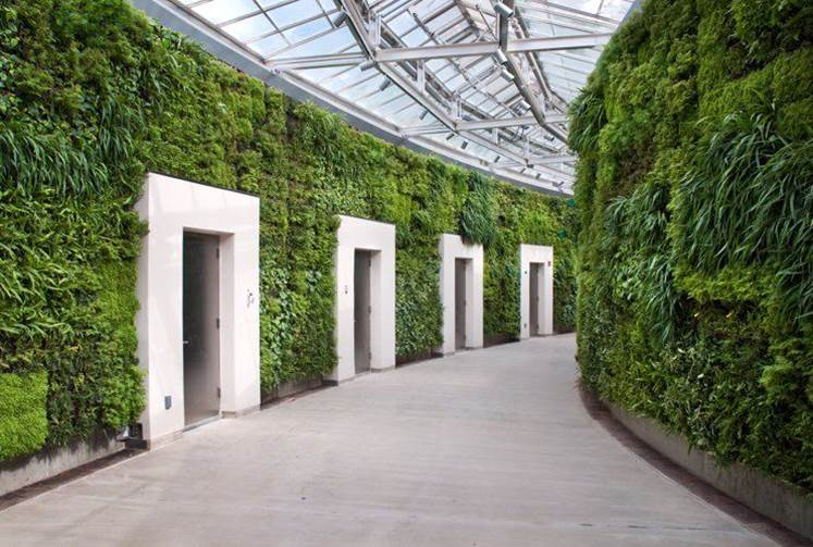 2new-living-buildings-that-grow-their-own-energy-image-source-victoria-lockhart-powerpoint-global-wellness-summit-2016